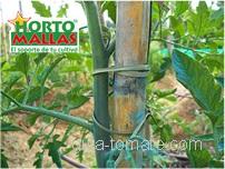En los cultivos rústicos, puede colocar varas a manera de postes para que la malla se apoye de estos.