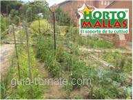 Gracias a la enorme versatilidad de la guía tomatera, usted pude personalizar la forma en la que esta se instala y hacerla eficaz para varios tipos de cultivos.